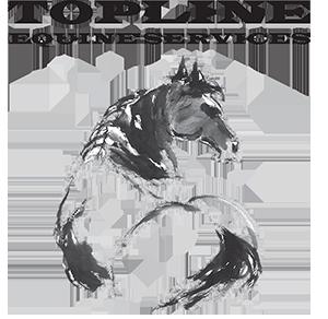 Topline Equine Services